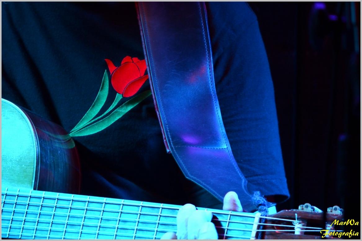 Przeglądasz zdjącia z koncertu: 2016-10-21 Czerwony Tulipan